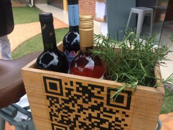 Vinhos do Los Mendozitos (Foto: Reprodução)