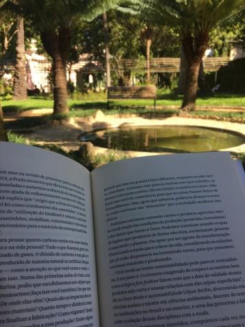 modacomproposito-livro-limonadaetc