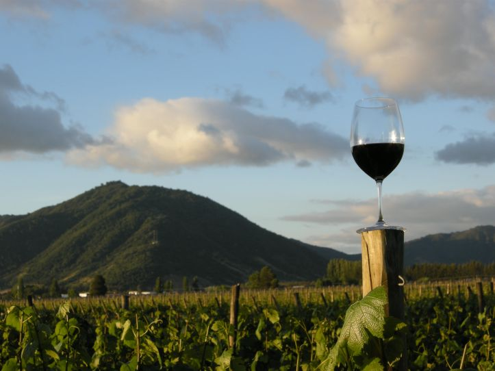 riowineandfood_landscape_chile